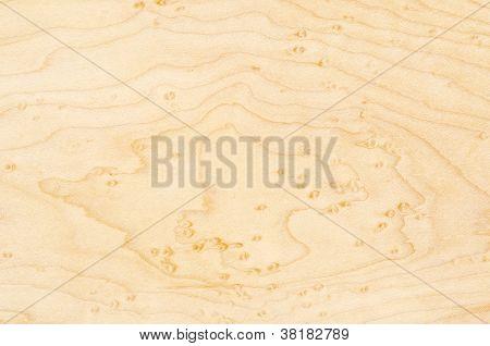 Birdseye Maple Texture