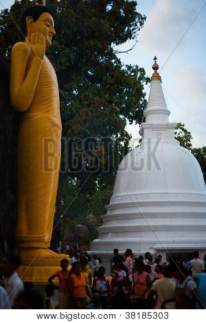 Vesak Full Moon Poya día Sri Lanka personas templo
