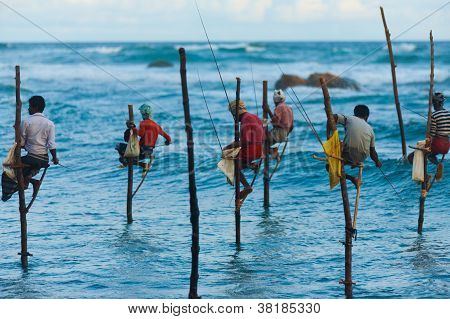 Stilt Fishermen Sri Lanka Traditional Fishing