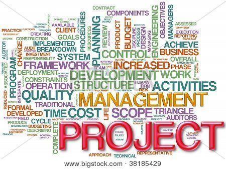Project Management  Wordcloud