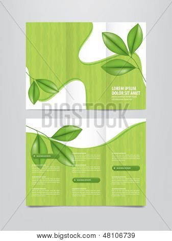 tri fold nature brochure template