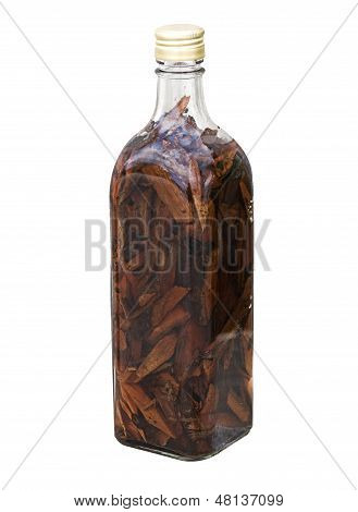 Isolated Mamajuana Bottle