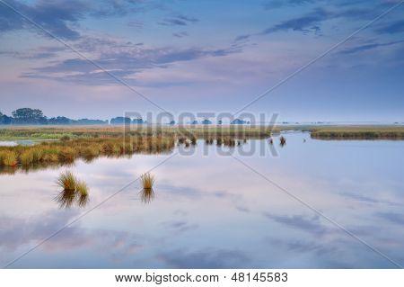 Tranquil Sunrise Over Wild Lake