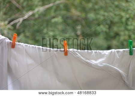 Three On White Bedsheet