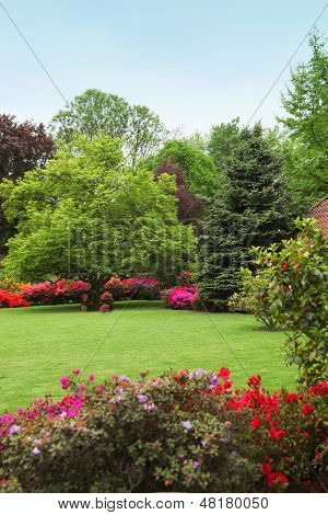 Colourful Spring Garden