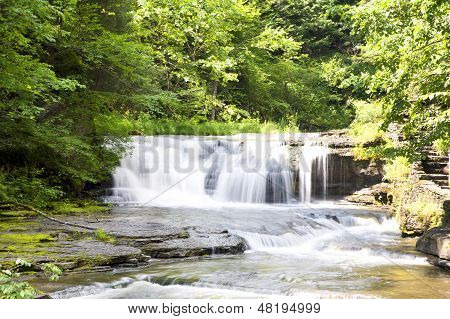 Waterfall At Robert H. Treman State Park