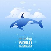 pic of whale-tail  - vector illustration of a grampus whale in the ocean - JPG