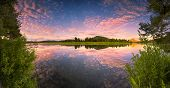 picture of tree snake  - The Oxbow Bend of the Snake River in Wyoming at sunrise - JPG