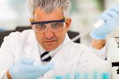 pic of microbiology  - middle aged medical researcher doing microbiology experiment - JPG