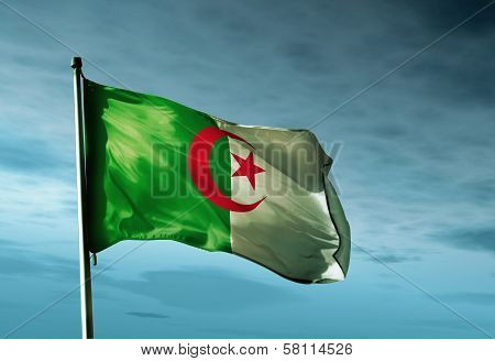 Algeria flag waving in the evening