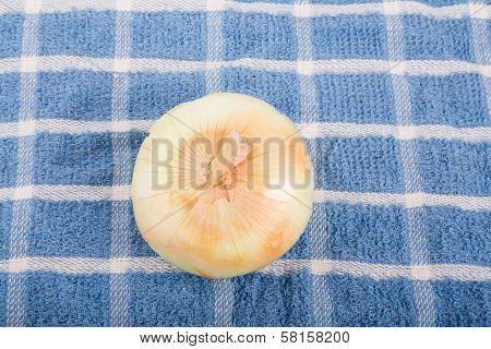 Whole Yellow Onion On Blue Plaid Towel