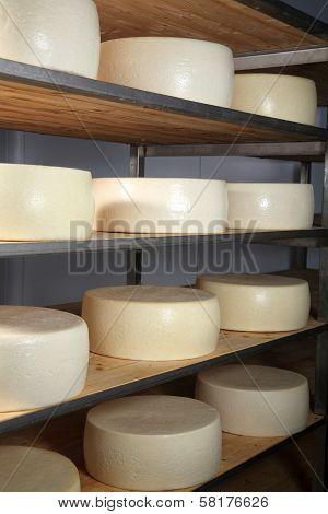 Maturing Cheese Storehouse