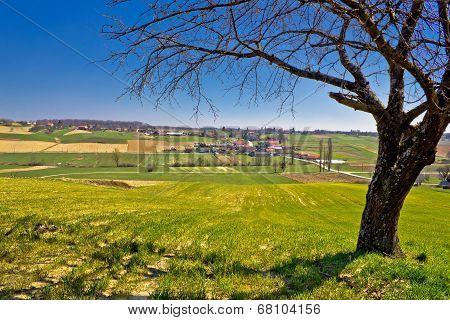Idyllic Village In Green Valley