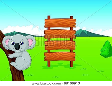 Koala cartoon with wooden sign