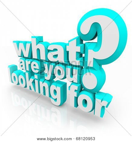 What Are You Looking For question asking your mission, goal, quest or objective