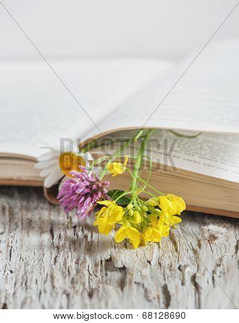 Flowers In Open Book