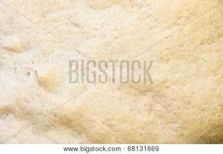 Bread texture.