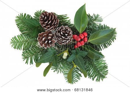 Christmas and winter greenery with holly, ivy, mistletoe, pine cones and fir over white background.
