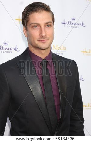 LOS ANGELES - JUL 8:  Daniel Lissing at the Crown Media Networks July 2014 TCA Party at the Private Estate on July 8, 2014 in Beverly Hills, CA