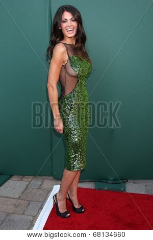 LOS ANGELES - JUL 8:  Lindsay Hartley at the Crown Media Networks July 2014 TCA Party at the Private Estate on July 8, 2014 in Beverly Hills, CA