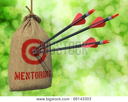 Mentoring - Arrows Hit in Red Mark Target.