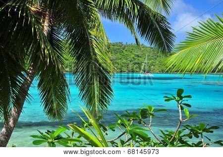 Tonga paradise