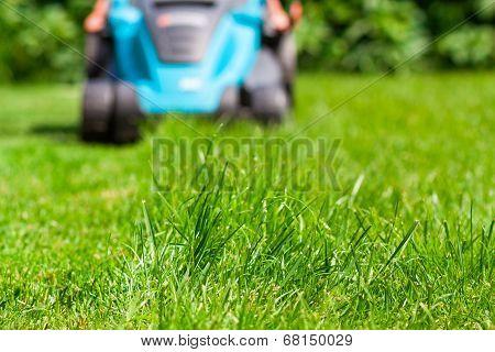 Blue Lawn Mower On Green Grass. Cut The Grass