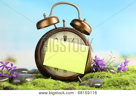 Summertime. Old clock on moss