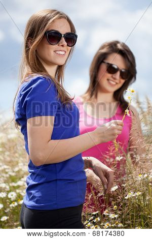 Girls Pluck Flowers On A Meadow