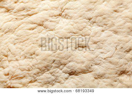 Dough Texture