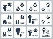 picture of wolf-dog  - Animal tracks vector icons set over white - JPG
