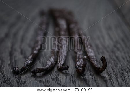 Bourbon Vanilla Pod On Oak Table
