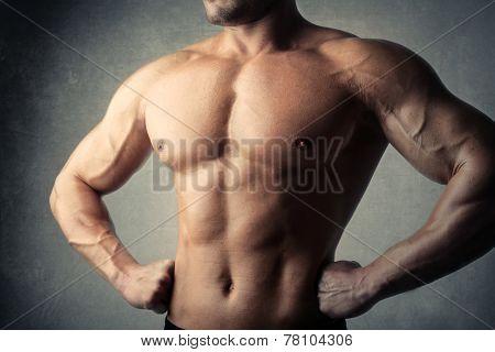 A muscular body