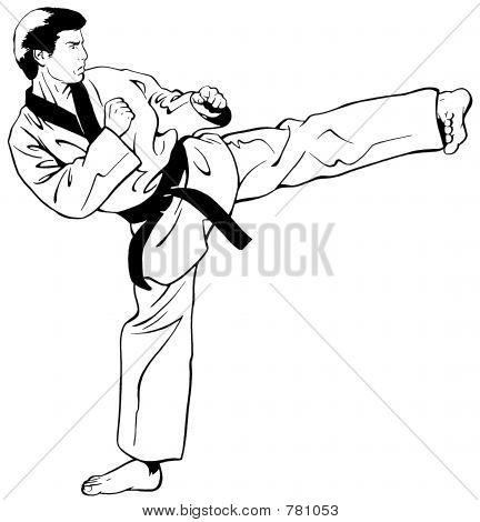 TaeKwonDo-Side Kick