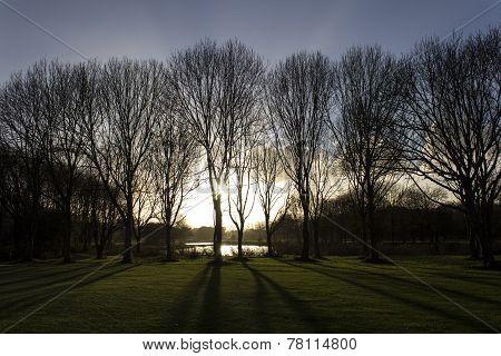 Sundown over golf course