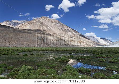 Green Pond Among Tibet Mountains