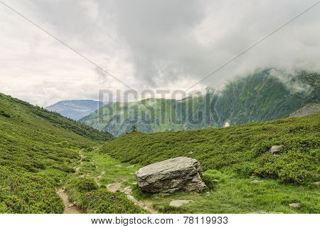 Hiking Path Among Green Alpine Valley