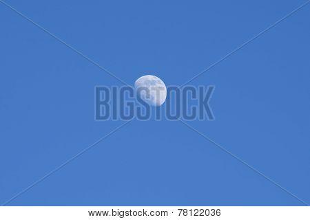 Moon in A Blue Sky