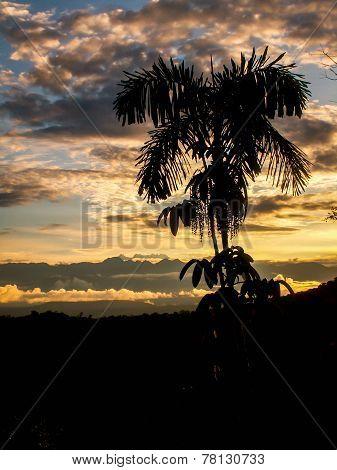 Sunset Mountain View Portrait