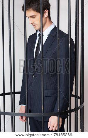 Business Criminal.