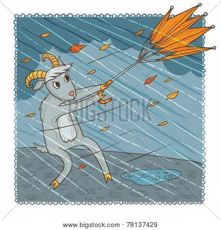 November goat