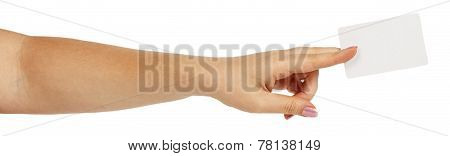 Female Hand Holding A White Business Card