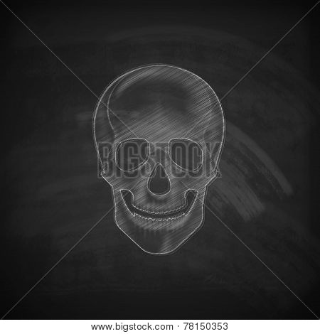 vector illustration of a chalk human skull on a blackboard background