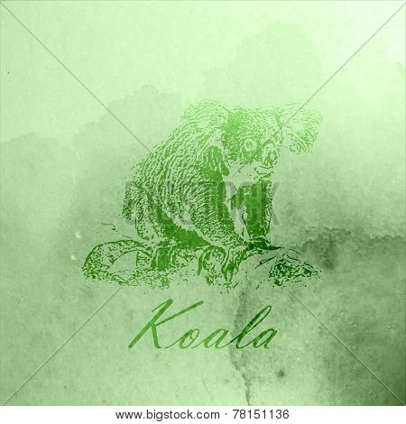 vector vintage illustration of a green watercolor koala bear on the old paper texture