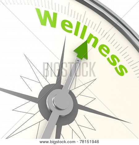 Wellness Compass