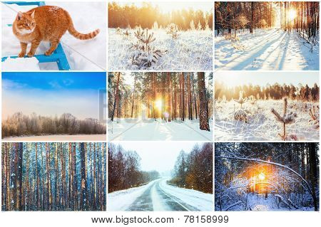 Collage, Set. Winter Theme