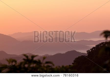 Smoky Mountains With Trees
