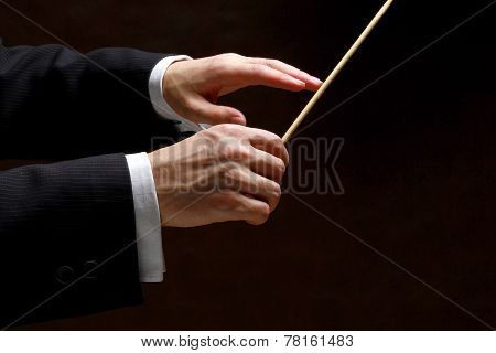 background, baton, black, classical, closeup, composer, concert, conductor, director, hands, holds,