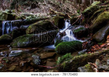 Mountain, forest stream