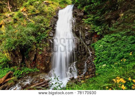 Small Waterfall In Val Di Sole